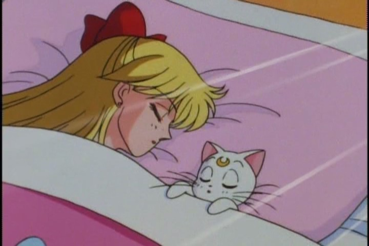 Not sure it's OK to sleep with a male cat who speaks English. Seems like... living in sin