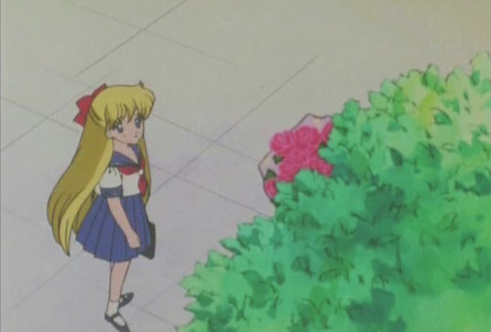 Minako sees flowers in the tree