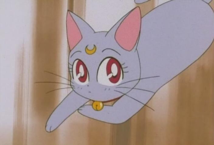 """Fish Fairy"" was my nickname in highschool"
